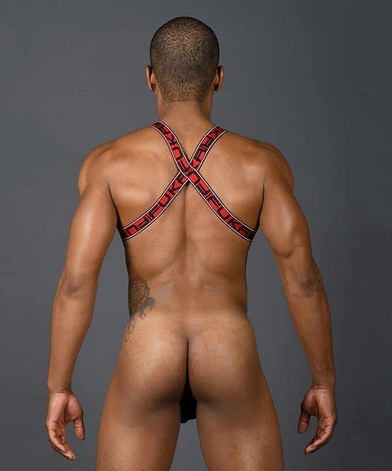 美國Andrew Christian FUKR Sinful C-Ring Harness 3166罪惡之環連身馬甲